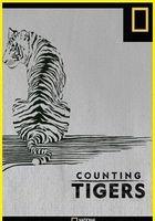 Каждый тигр на счету