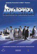 Антарктика: Путешествие в неизвестную природу, 1991