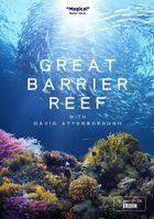 BBC. Большой Барьерный риф с Дэвидом Аттенборо