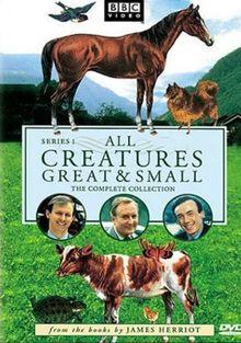 Все существа, большие и малые, 1978