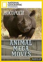 Мега переезды животных