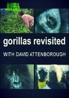 Возвращение к гориллам с Д.Аттенборо