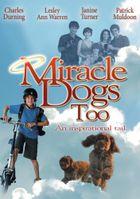 Зак и чудо-собаки