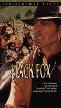 Чёрный лис, 1995