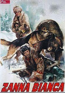 Белый Клык и одинокий охотник, 1975