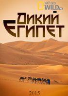 Дикий Египет