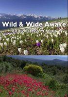 Пробуждение дикой природы - европейская весна