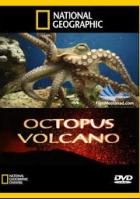 National Geographic. Вулкан осьминогов (Вулкан и осьминоги)