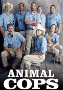 Полиция Хьюстона: Отдел по защите животных, 2003