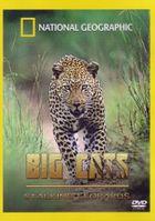 National Geographic. Леопарды дельты Окаванго