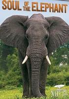 Удивительные слоны (Душа гиганта)