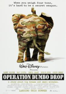 Операция «Слон», 1995