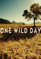 Один дикий день