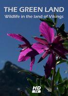 Гренландия: Дикая природа страны викингов