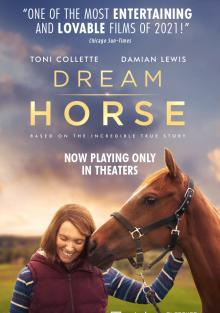 Лошадь мечты, 2020