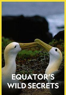 Необычная природа экватора, 2020