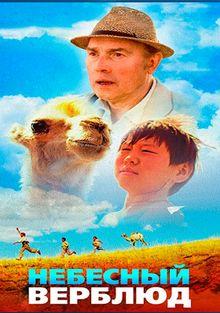 Небесный верблюд, 2015