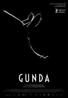 Гунда, 2020