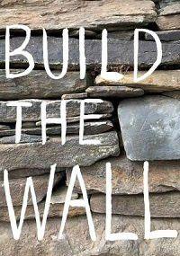 Построить стену, 2020