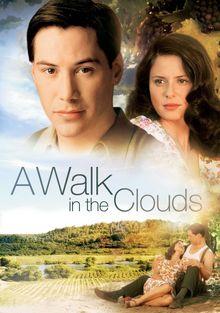 Прогулка в облаках, 1995