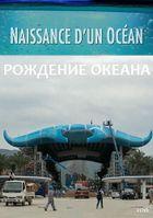Рождение океана