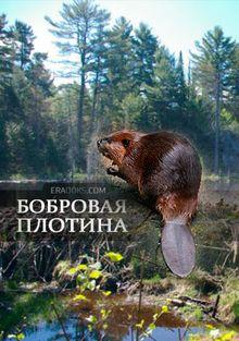 National Geographic: Бобровая плотина, 2009