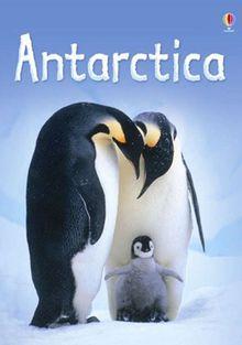 Дикая Антарктика, 2015