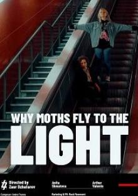 Почему мотыльки летят на свет?, 2021
