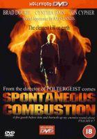 Спонтанное возгорание