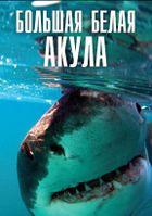 BBC: Плотоядные. Большая белая акула