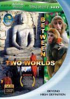 Дикая Азия: Меж двух миров