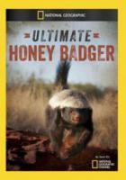 National Geographic. Жизнь одного медоеда