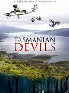 Тасманские дьяволы