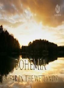 Богемия: Год среди болот, 2009