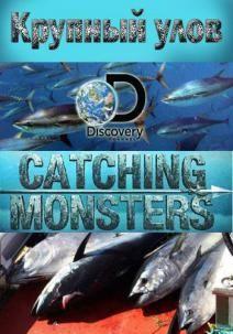 Discovery. Крупный улов, 2015