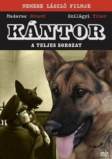 Кантор, 1976