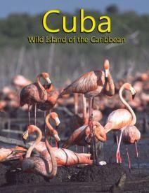Куба: Дикий остров Карибов, 2004