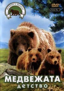 Медвежата. Детство, 1997