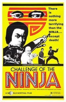 Шаолинь вызывает ниндзя, 1978