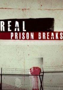 Я сбежал: настоящие побеги из тюрьмы, 2010